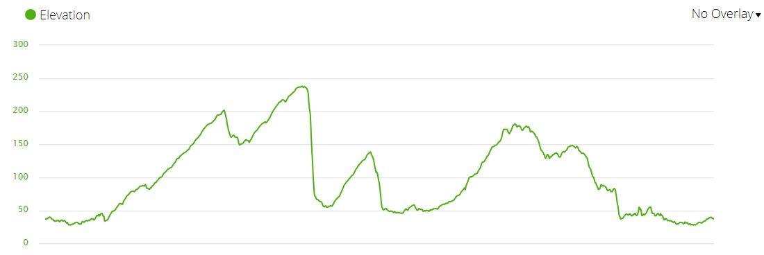 13082019 Elevation.jpg