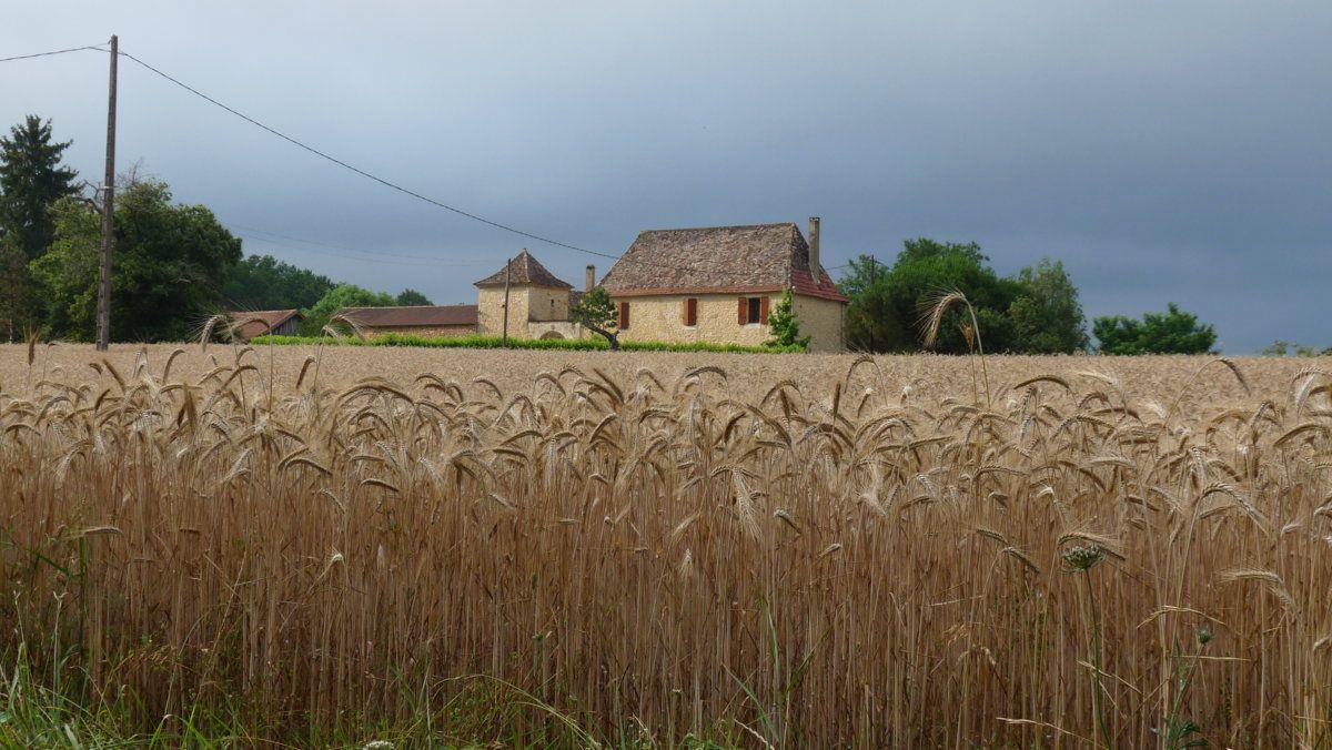 156 Perigord countryside.JPG
