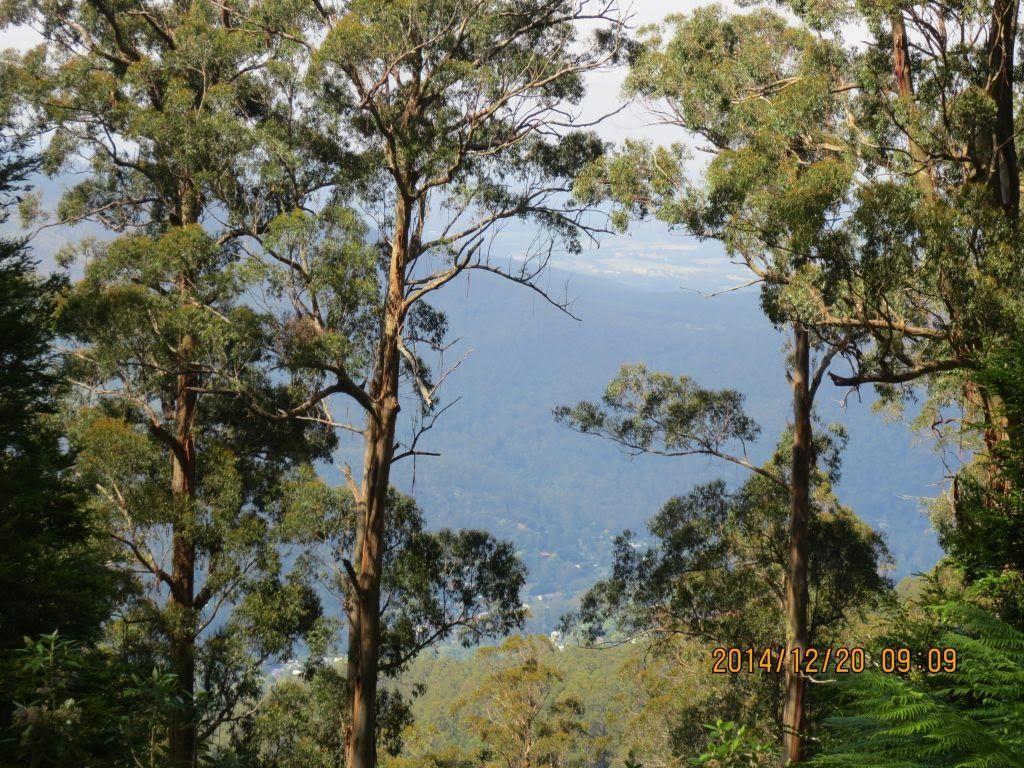 20141220-ringw_nth-donna-climb10-lookout2.jpg