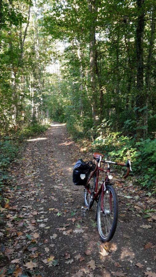 2020_09_30_Commute_woods_01.jpg