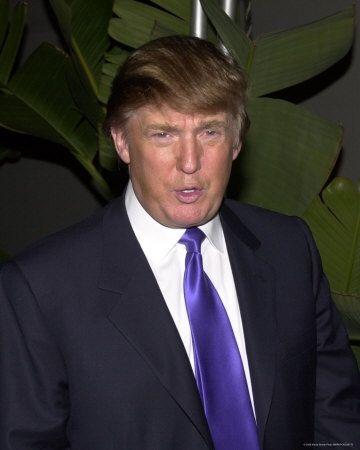 259175~Donald-Trump-Posters.jpg