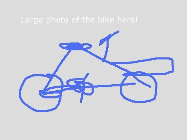 bike_demo_large3.jpg