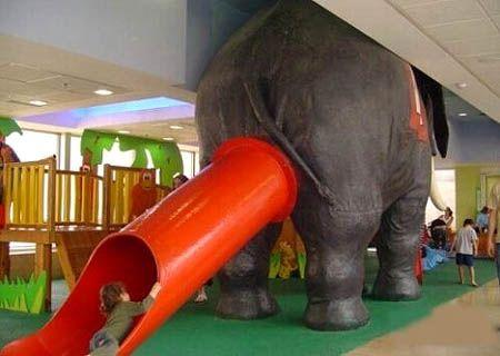 elephant-slide-01.jpg