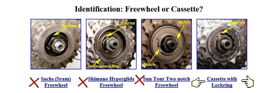 freewheel-or-freehub.jpg