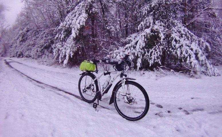 gt winter.jpg