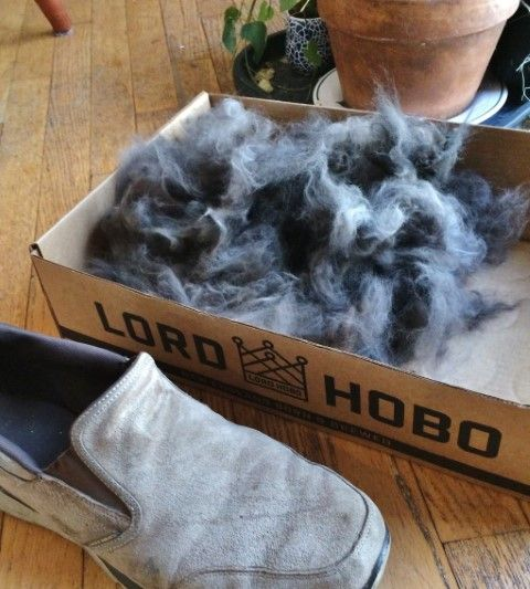 hair pile 1.JPG