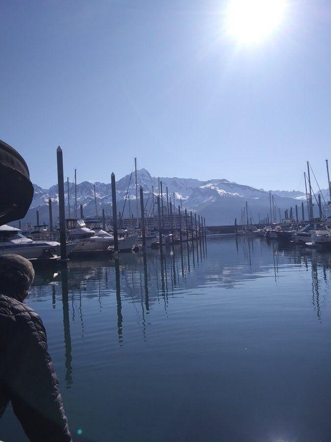 harbor_north.jpg