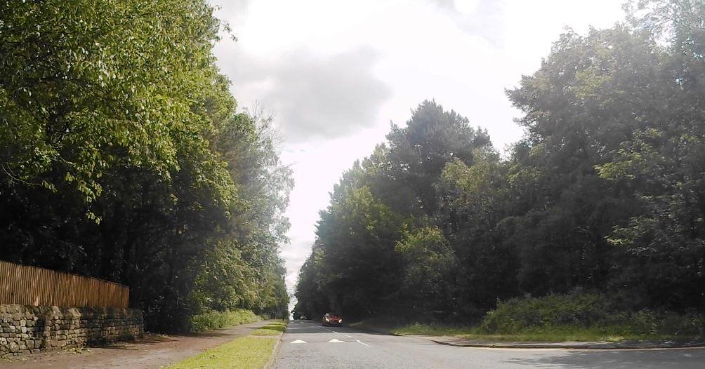 Harlow Moor2.jpg