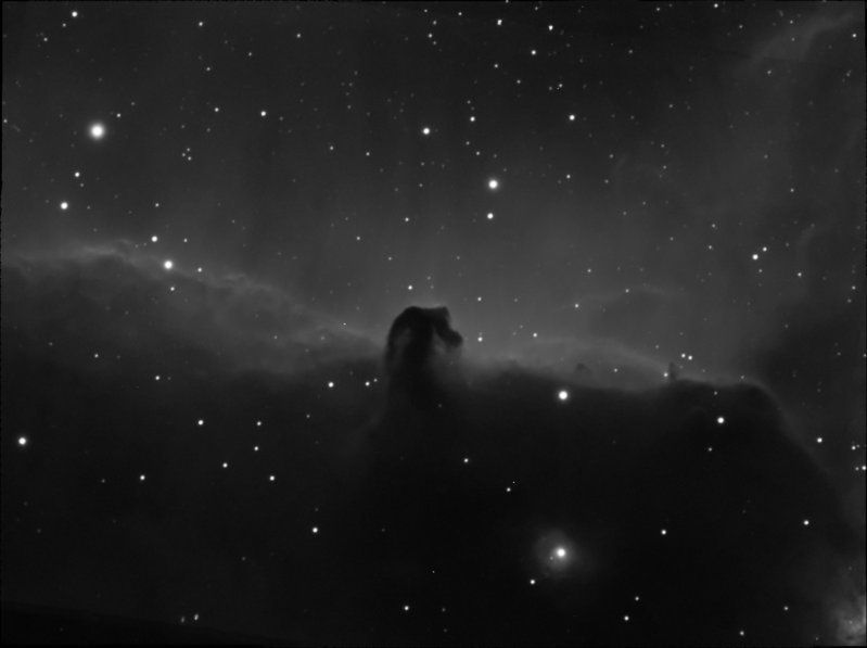 Horsehead nebula ED80 - 20 & 25-12-09.jpg