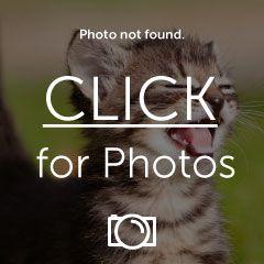 imagejpg3_zps4d92925b.jpg