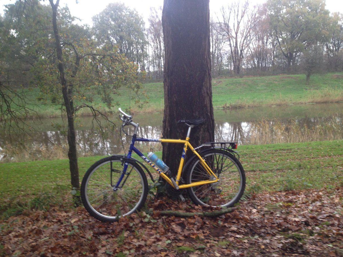 The Bike - Roccado