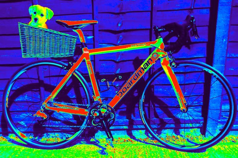 infraredpuppy.jpg