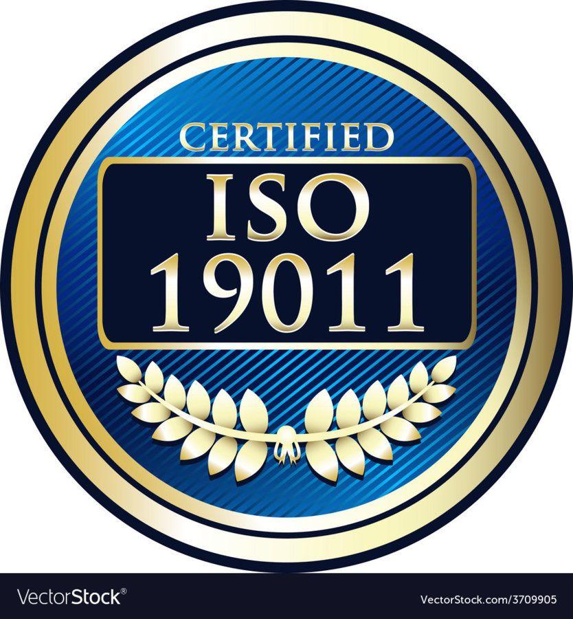 iso-19011-vector-3709905.jpg