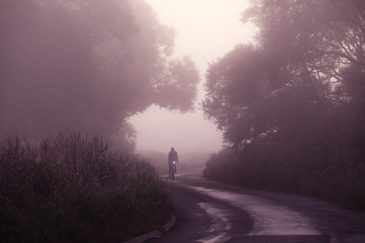 Misty Morning-12.jpg