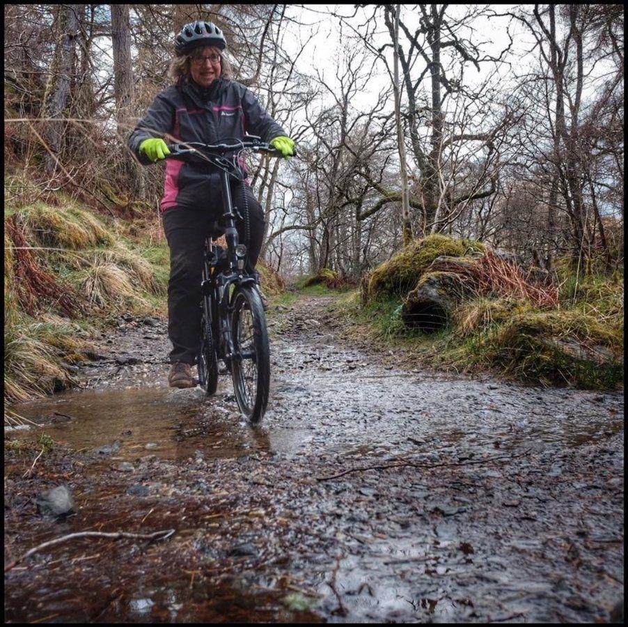 muddy track.jpg