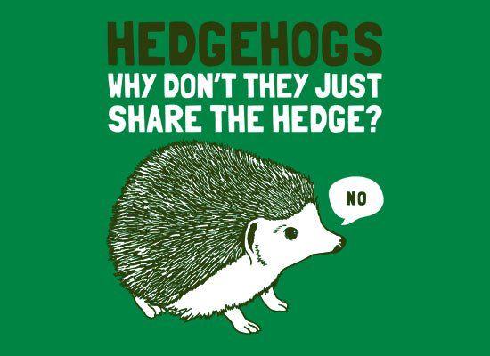 November-24-2011-02-28-14-hedgehogssharefullpicartwork.jpg