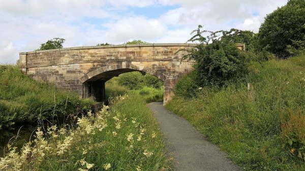 one-of-the-many-bridges.jpg