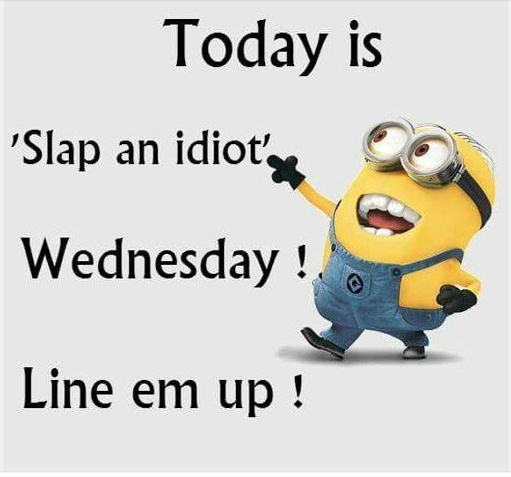 slap-an-idiot-wednesday-jpg.jpg