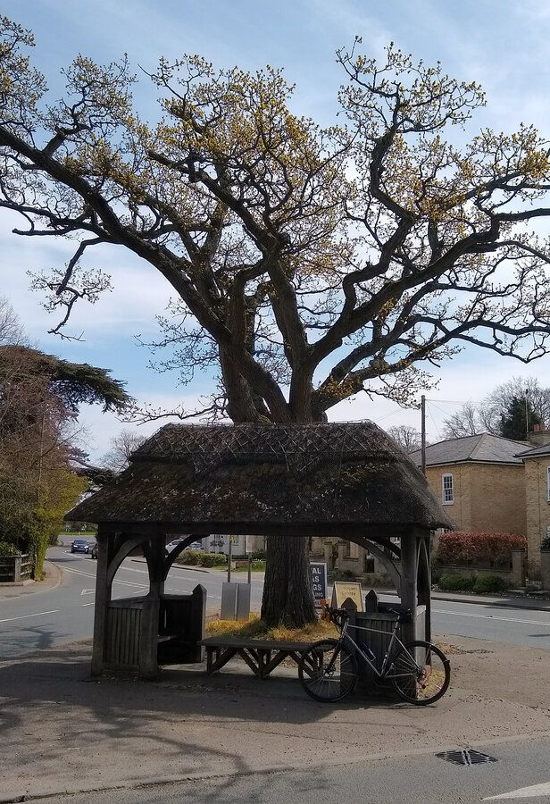 Thatched shelter - Yoxford.jpg