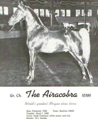 the+aircobra.jpg