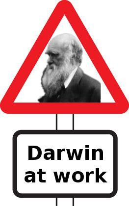 warning-sign-darwin.jpg