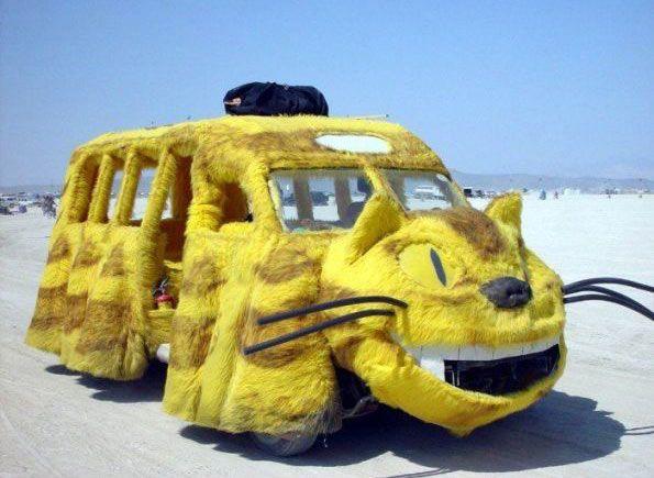 yellow-cat-van.jpg